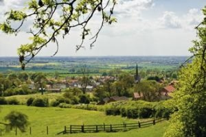 Bishop Wilton view