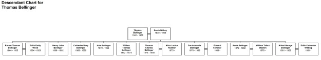 Descendant Chart for Thomas Bellingercropjpg